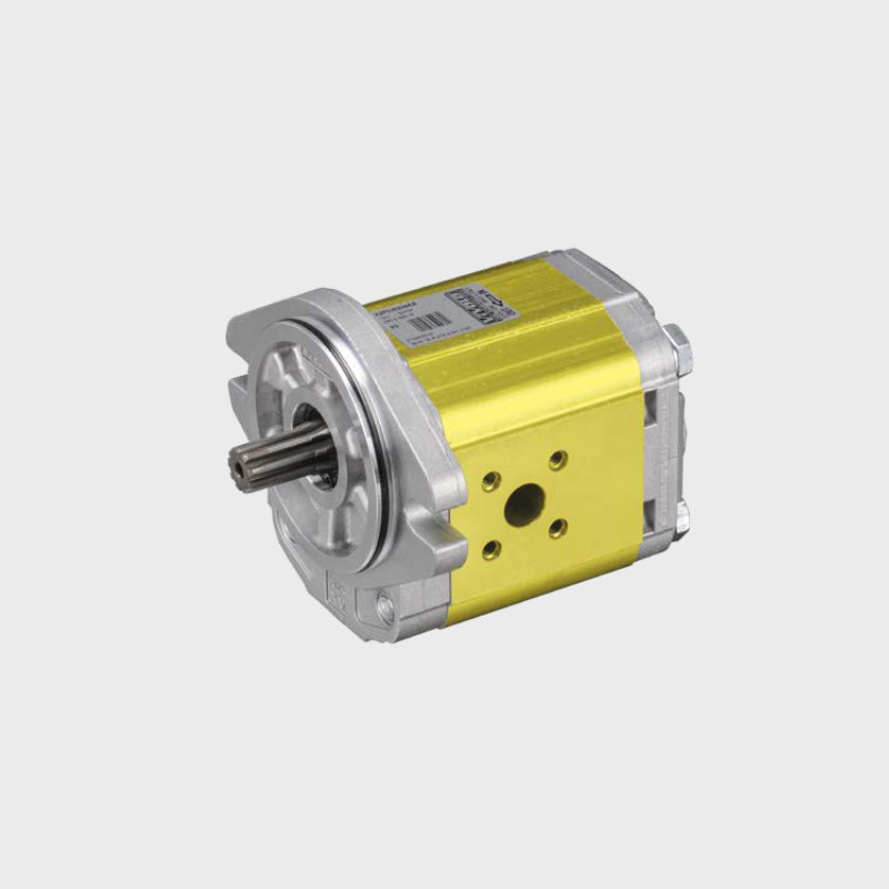 zahnradpumpe-012-100 XV2 SAE Serie